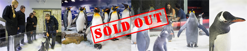 Penguin Valentines - SOLD OUT