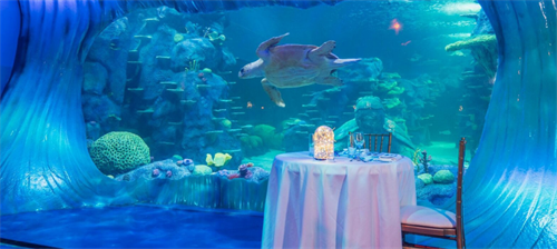 SEA LIFE Sydney Aquarium Private Dining.png